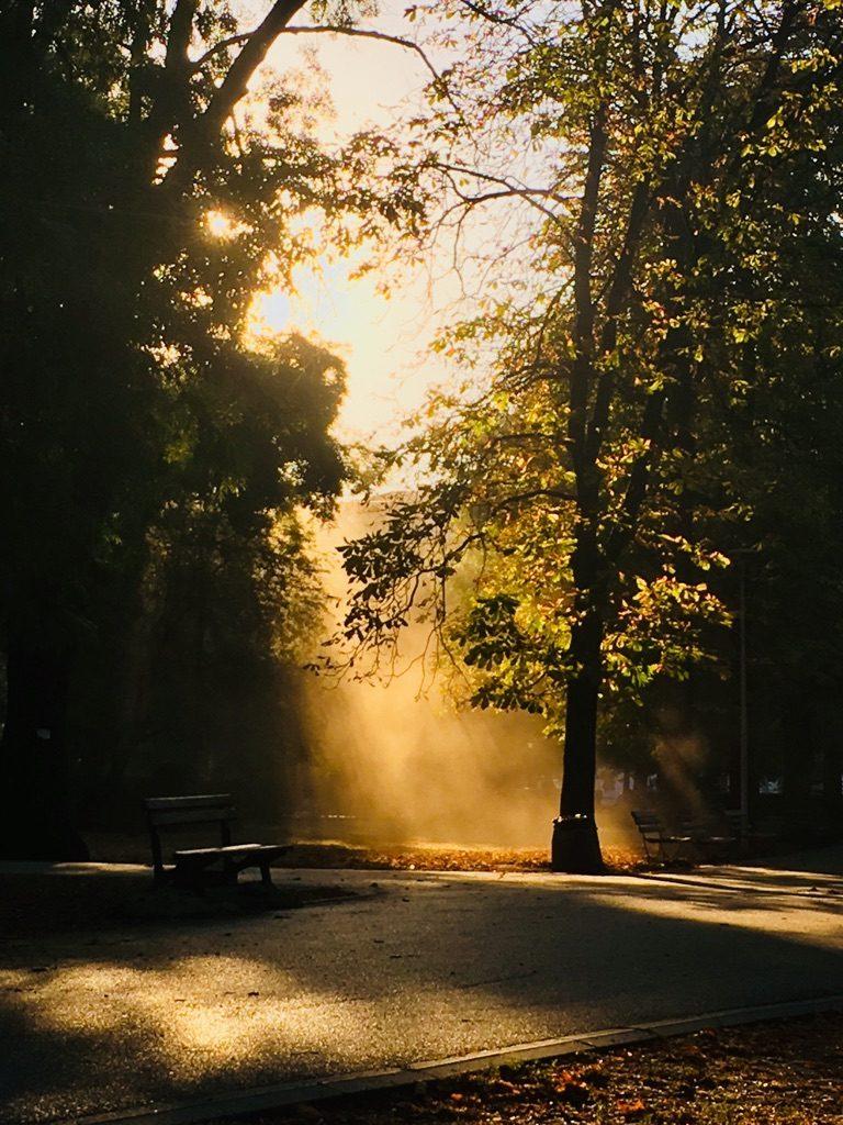 Morgenstund hat Gold im Mund. Nach dem täglichen Morgenworkout im Park.