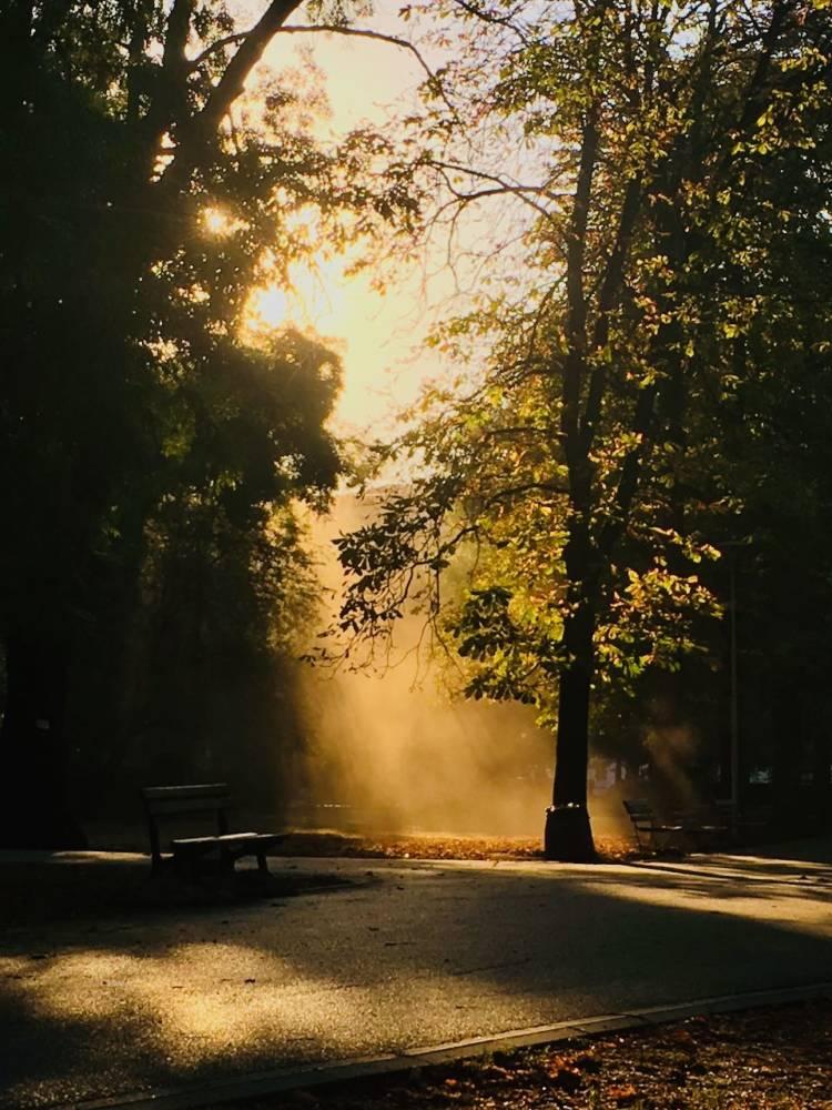 Tolles Licht beim morgendlichen Workout im Park in Sofia.